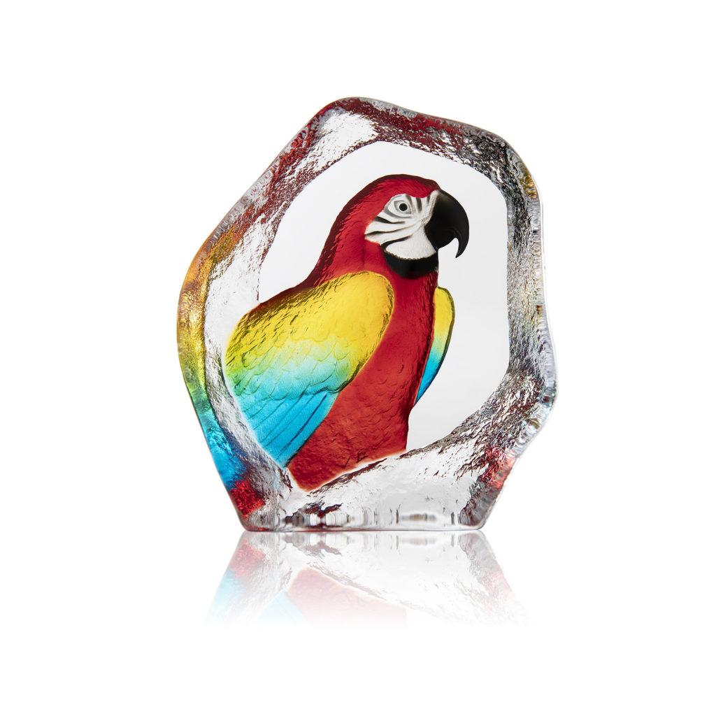 34284 Parrot 1024x1024