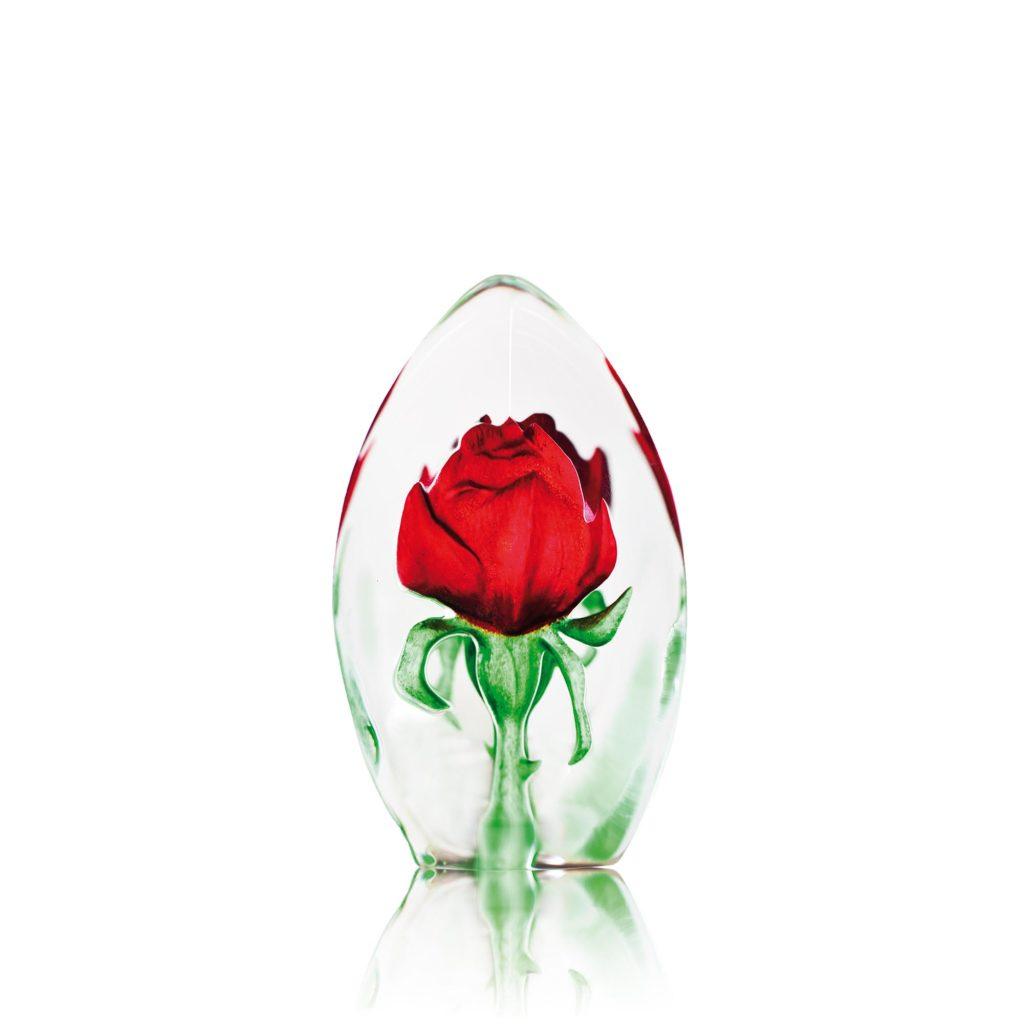 33838 Rose 1024x1024