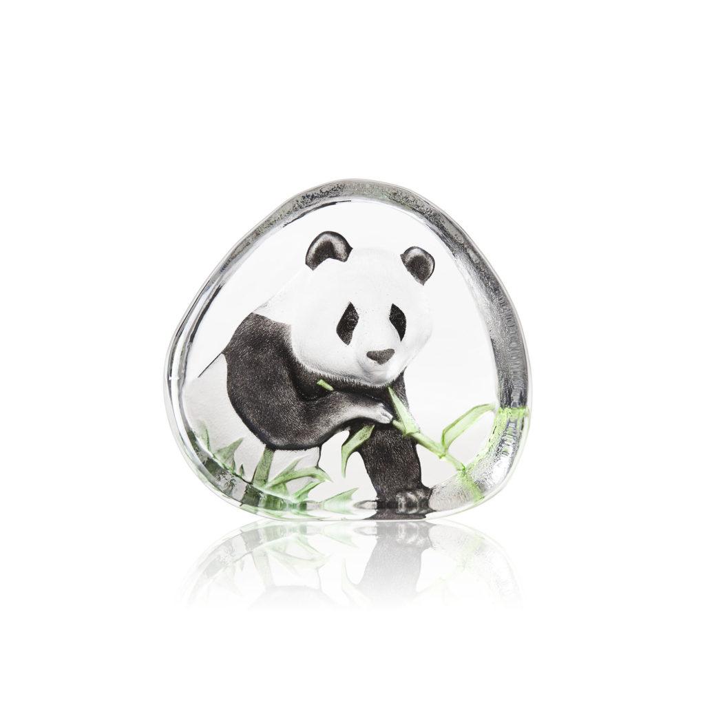 33937 Panda 1024x1024