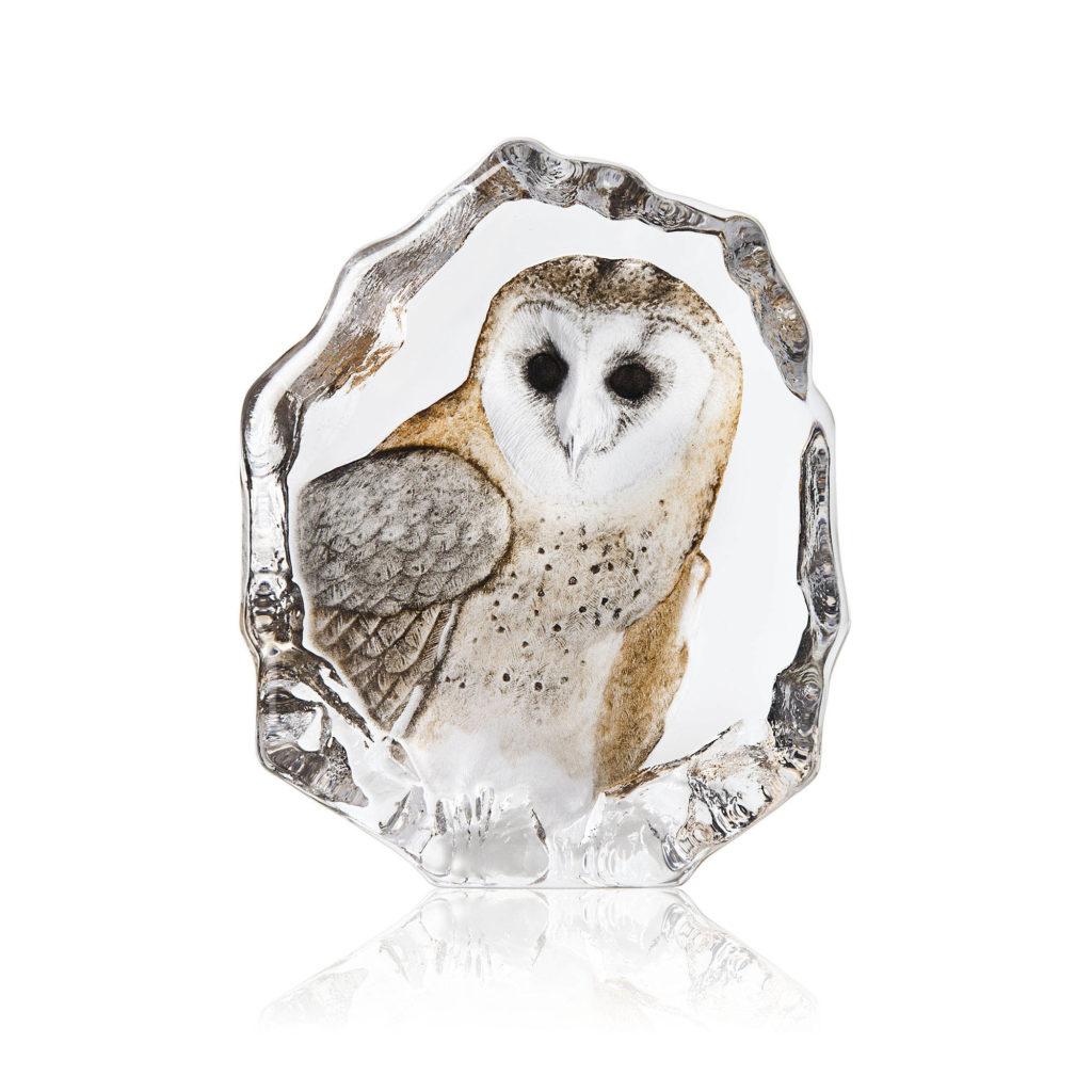34200 Barn Owl 1024x1024