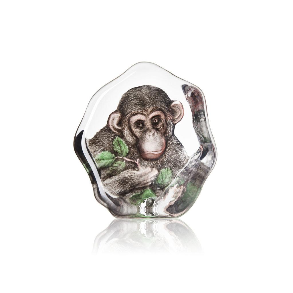 34202 Chimpanzee 1024x1024
