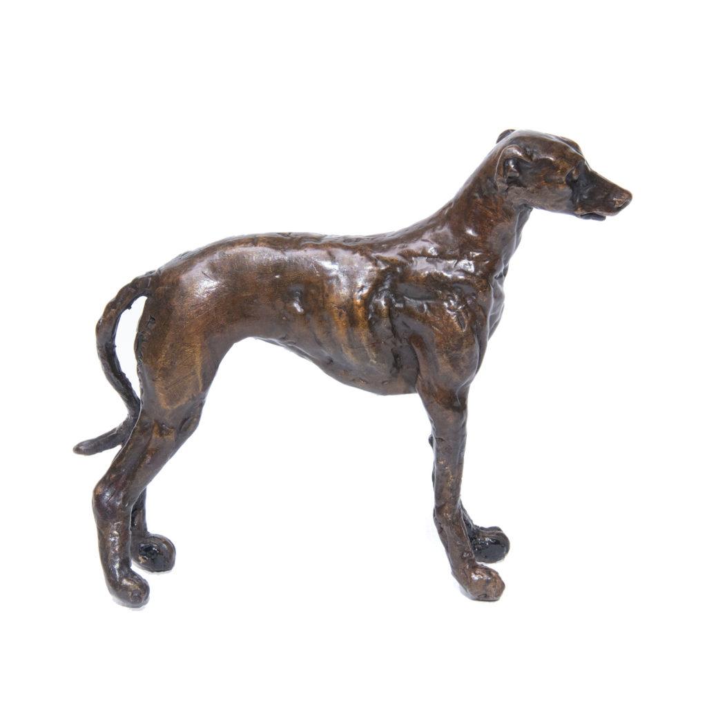 Greyhound Standing 1024x1024