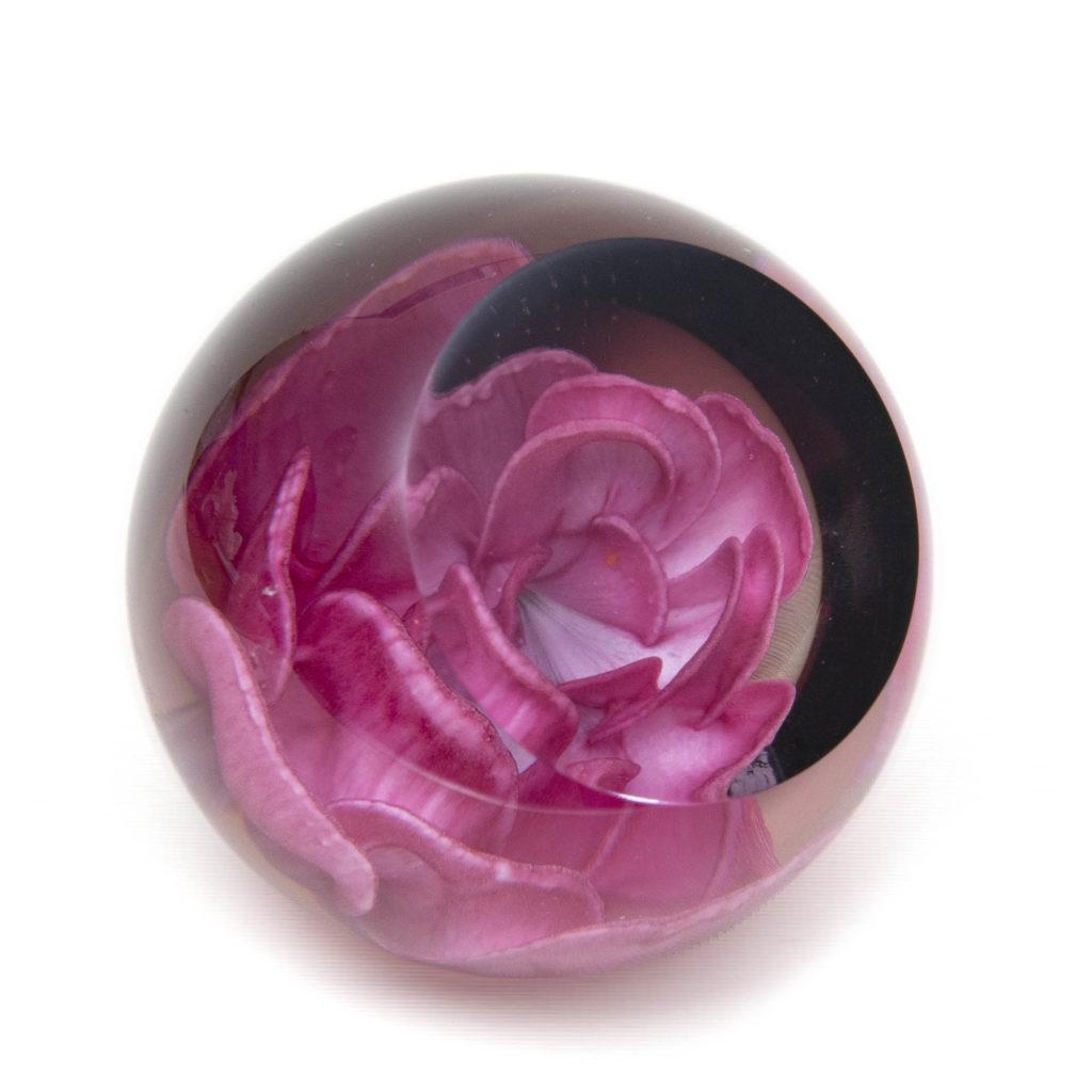 Floral Charm Pink Rose 01 U13056 1024x1024