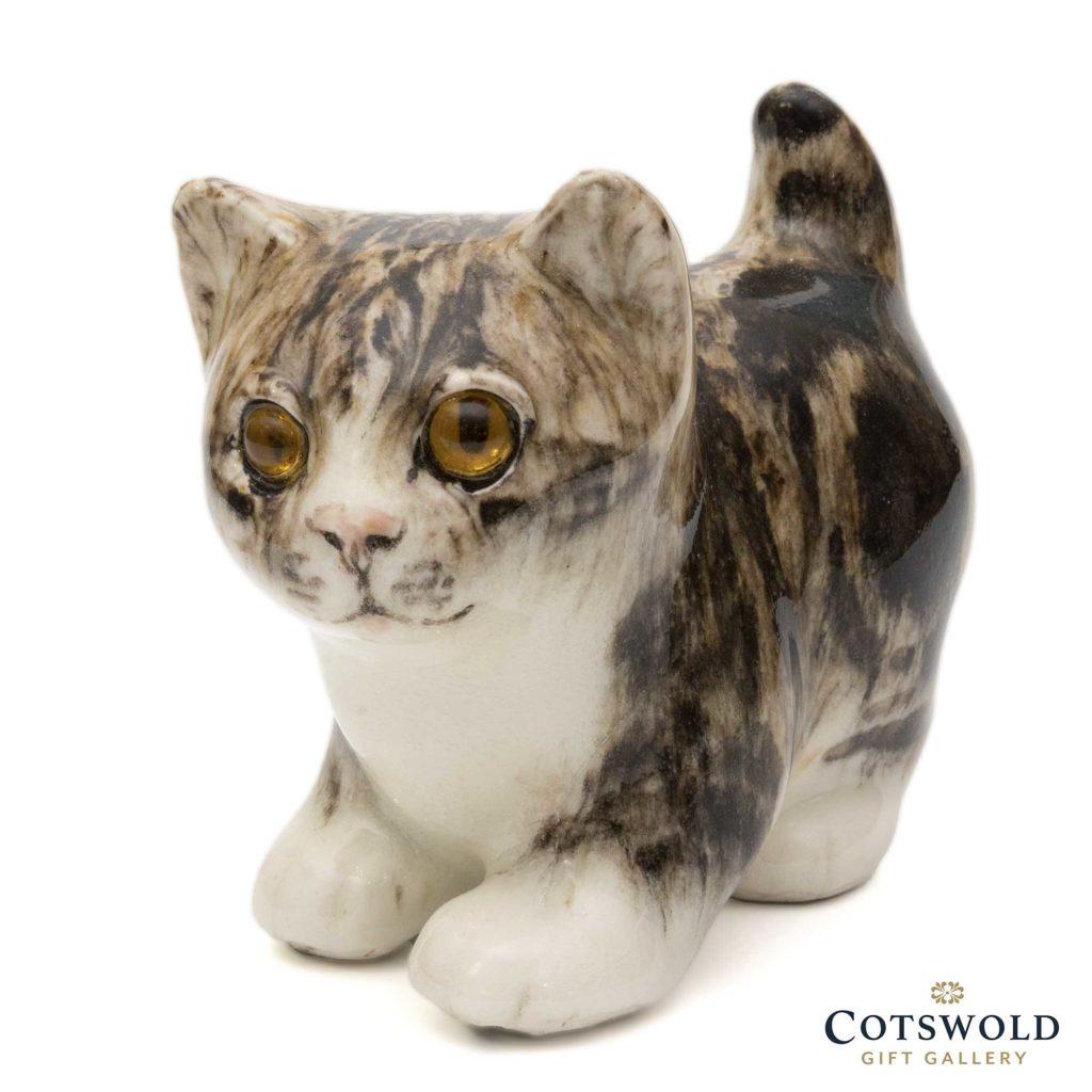 Winstanley Tabby Kitten Size 1 1 1024x1024
