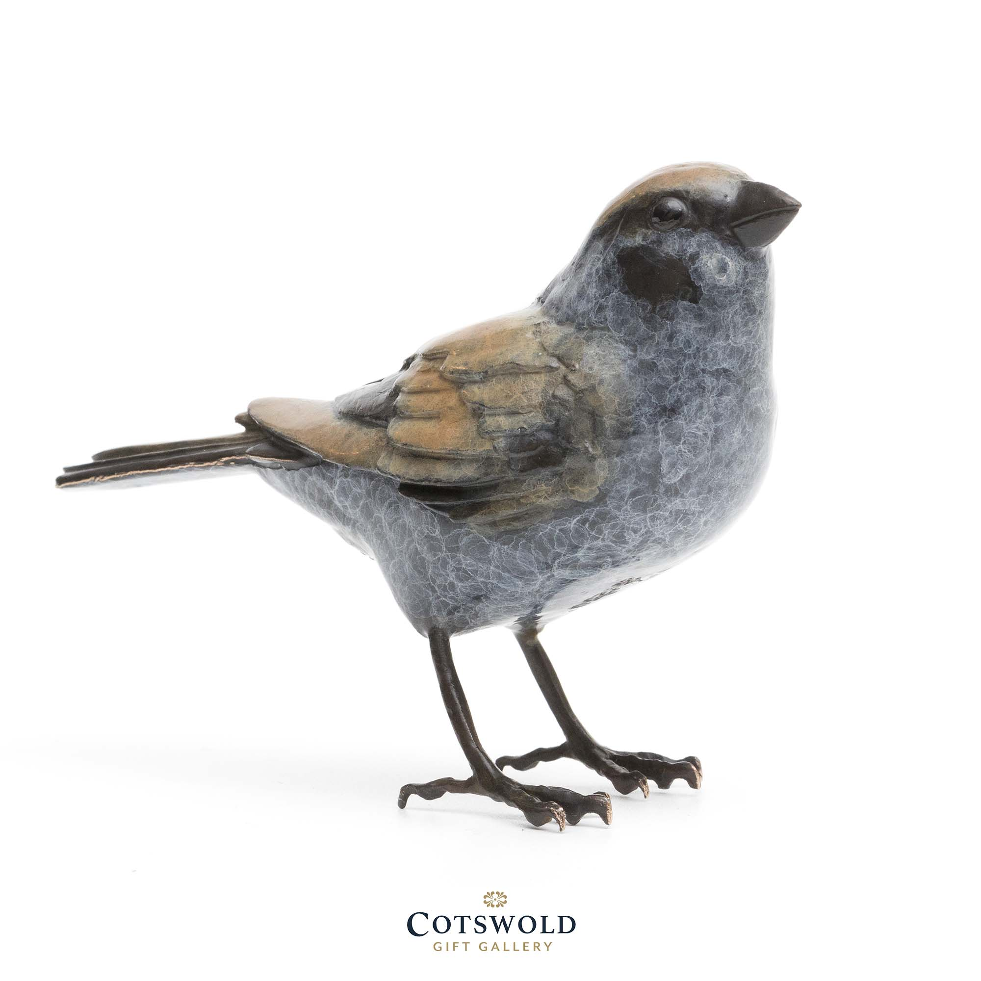 Unique Bronze Sparrow 3