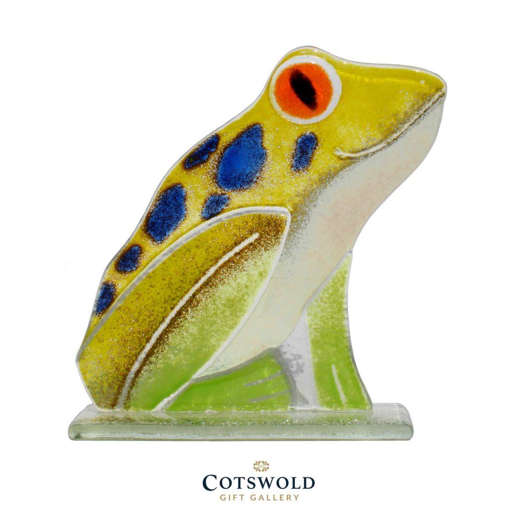 Frog Spot Jpeg Copy 1024x1024