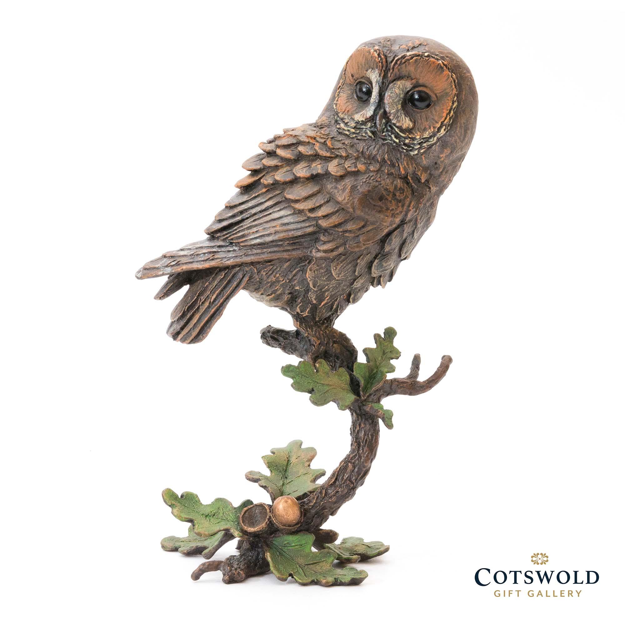 Michael Simpson Tawny Owl With Acorns